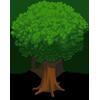 Oak Tree-icon