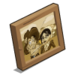 Fanny's Family Portrait-icon