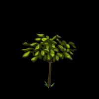 File:Cherry Tree Sapling-icon.png