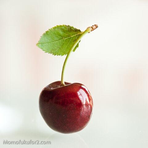 File:Cherries47.jpg