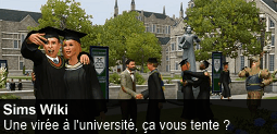 Fichier:Spotlight-sims-20130201-255-fr.png