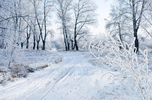 Fichier:Snow-83036 960 720.jpg