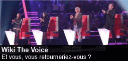 Fichier:Spotlight-thevoice-20130301-255-fr.png