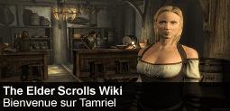 Fichier:Spotlight-thelderscrolls-20121001-255-fr.png