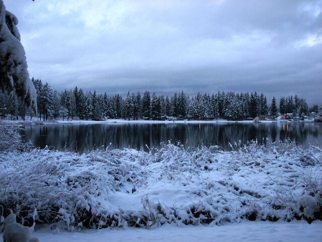 File:Snowy Everett.jpg