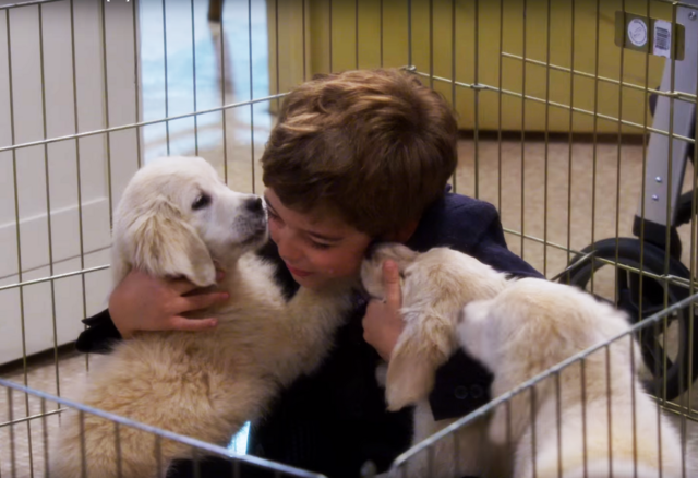 File:Max Fuller with puppies 001.png