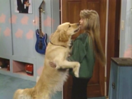 Full House S03E07 Screenshot 003