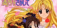 Full Moon o Sagashite: Original Soundtrack Vol.2