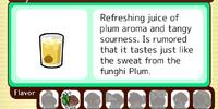 Icy Plum Juice