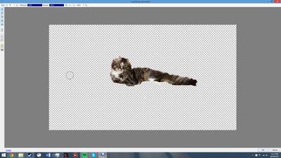 Paintnet screenshot4