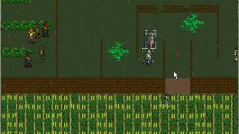 Zombie dawn UK - cornfields