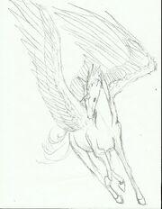 Veyron sketch