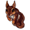 1785-red-squirrel