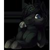 908-black-horse-plush