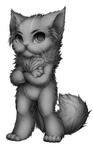 File:Cat persian base.png