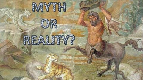 Centaurs Myth or Reality?