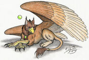 Razak the griffin by wolfpearl