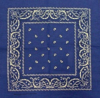 File:Blue3 Bandana.jpg