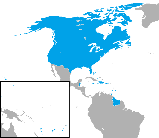File:United States map.png