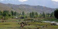 Ҷумҳурии Бишкек (A nice new world...)