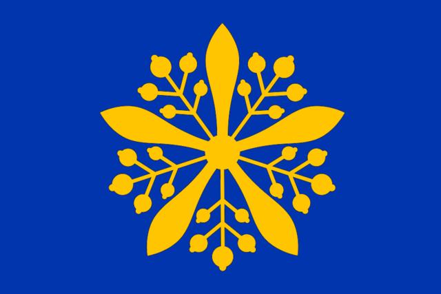 File:Manchuria Flag.png