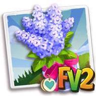 Heirloom Purple Lilac Bouquet