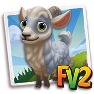 Jining Grey Goat