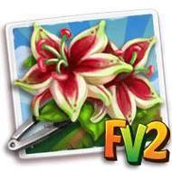 Passion Flower Hair Clip