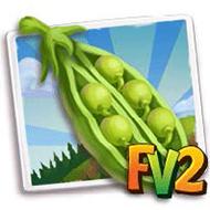 Green Peas Crop