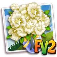 White Crape Myrtle Bouquet