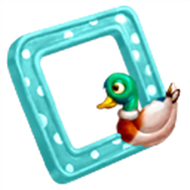 Duck Picture Frame