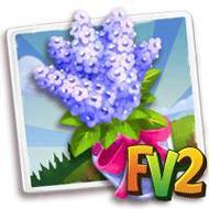 Purple Lilac Bouquet