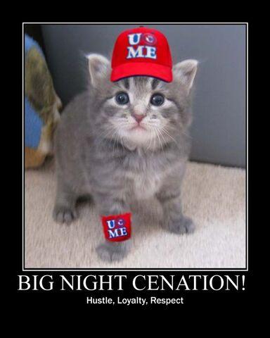 File:Cena kitten poster.jpg