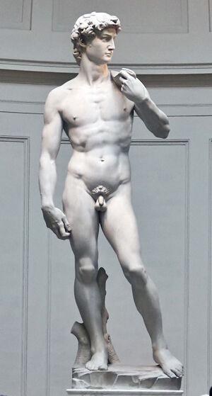 David-full-front