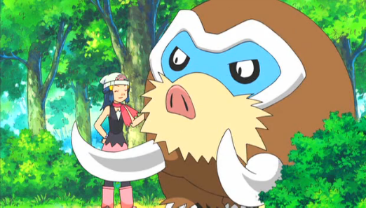 File:Dawn and Mamoswine.png