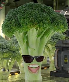 Broccoli leader