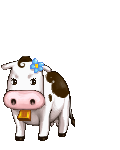File:Cow avatar.png