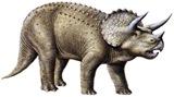 Triceratops-thumb