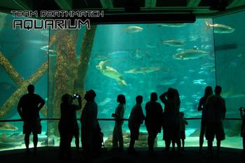 Aquarium Loading Screen