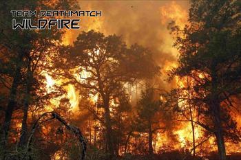 Wildfire Loading Screen