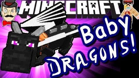 Minecraft BABY ENDER DRAGONS! Hatch & Fly!