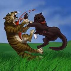 Scourge killing Tigerstar