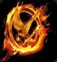 File:Hunger GamesButton.jpg