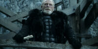 Lord Commander of the Night's Watch