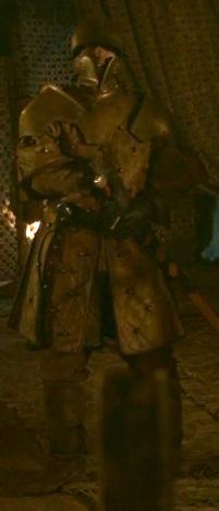 File:Renly's Kingsguard 1.png