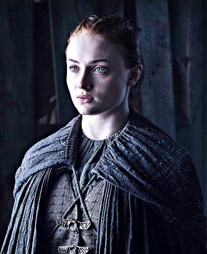 ファイル:Sansa the door promo.jpg