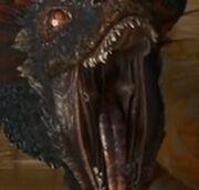 Dragon's fire-spitting organ