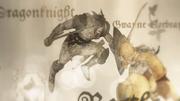 Daemon Blackfyre versus Gwayne Corbray