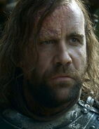 The Hound Rains of Castamere