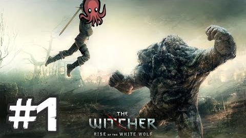 The Witcher 3! ugh!